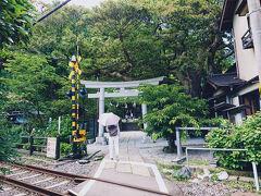 続いては、江ノ電の踏切に隣接している、御霊神社に行きました。