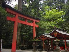 車で1時間圏内の箱根までドライブ敢行!  先ずは箱根神社の参拝から…
