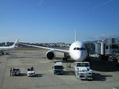 保安検査を終えて17番搭乗口に向かうと、本日の搭乗機であるB787-8(JA846J)が待機していました。