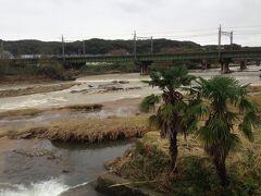 これは留守にしてた時に入間川が台風19号の影響で氾濫した時の様子です。 数日後ですがまだ水量が多く濁っています。