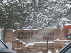 やって来ましたグランドキャニオン国立公園! ネバダ州→アリゾナ州は1時間の時差があり、ランチ休憩を挟んで着いたのはすでに夕方近く。 しかも国立公園のゲート前は大渋滞で、入場するのに1時間くらいかかりました。 おかげで楽しみにしていた夕日には間に合わず(涙)  道中ほとんど雪がなかったのに、国立公園の中は別世界のように雪が積もっていました。