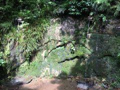 不動の瀧と名前は立派ですが、水が二筋だけ。
