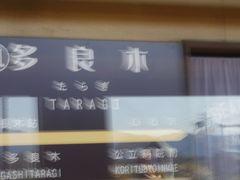多良木駅です。すぐそこに元「はやぶさ」のブルートレインがありました。 平成31年4月より無人駅だそうです。