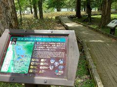 湯川渡ってここから木道に入ります。木道は短いですが。