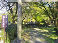 願成寺では墓地が日本遺産だそうです。他に桜などの花も綺麗に咲いていました。