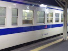 乗り換えた列車は2両編成でしたが、人吉駅の時いた私を含めた2人が1両に1人づつ乗っただけみたいです。 すれ違う列車も同じく1両に1人ぐらいしか乗っていませんでした。 そして、そのまま終点の隼人駅に到着しました。
