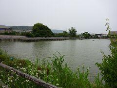 右側の八条が池