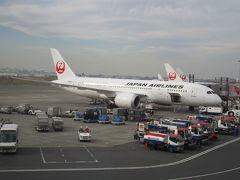 東京国際空港到着後に撮影した、本日の搭乗機であるB787-8(JA846J)。 JMBの上級会員ではありませんが、今後ともたびたびお世話になると思います。