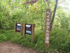 この辺りは金沢市民の森  多少倒木はありましたが通行禁止にはなっておらず。