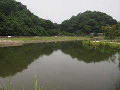 永福寺跡で一息入れて鎌倉宮へ。  永福寺跡は来るたびに姿を変えるな。 源頼朝が建立した寺院の跡だけれど、初めて目にしたときは何もない荒れ地だった。