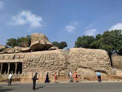 続いて道端の巨岩に壮大な歴史絵巻が掘られた「アルジュナの苦行」。