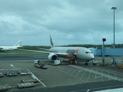 翌朝、帰国の日がやってきてしまいました。 LCCなのが残念ですが、ジェットスターでケアンズ→成田の直行便です。  さようなら、オーストラリア。 また近いうちに訪れたいと思います。