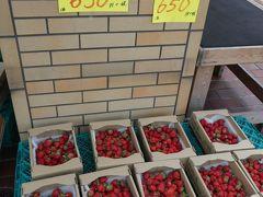 神社を後にのせでんの最寄り駅「多田」まで歩いて移動。 途中、駅手前の交差点で見かけた果物屋さんを覗いてみると、川西市のお隣の猪名川町産の採れたてイチゴが並んでました。おいしそうな旬のイチゴ、そして八百屋さんの特売野菜をお買い上げー。