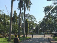 <ルンピニ公園>  ルンピニ公園はスコータイに泊った時に 走ったことがあります。  広いし、道も分かれているので、 ランナーの後をついていくと周回できます!
