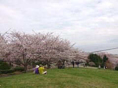 【手宮公園(小樽市)】 (入場無料)(駐車場無料) 石狩湾を望む高台にエゾヤマザクラやソメイヨシノなどが約700本もが咲く桜の名所。山の稜線が見える所は張碓地区。