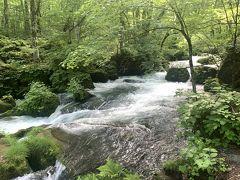 阿修羅の流れ。奥入瀬渓流の中で流れが1番激しく人気のスポット。