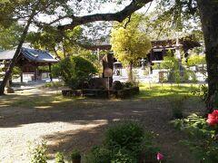 加古川市の鶴林寺 広い公園になってます 牡丹がちょっと残ってます