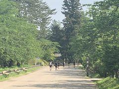 日曜日の朝のためか公園はジョギングしてる人が多かった。