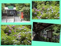 極楽寺駅前の土手も一面アジサイ 鎌倉市観光協会によると近所のご夫婦が手入れをしてくださっているとか。  まもなく14時半 まだ陽は高いですが、今日は朝7時から歩き回っているのでそろそろ家路につきます。