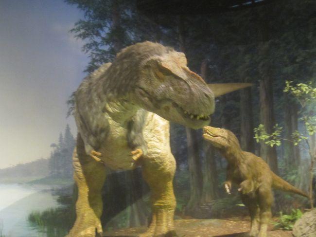 恐竜 博物館 県 茨城