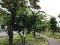 高原基金の森