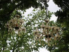 長居植物園 ガーデンイルミネーション