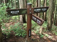 何度か分岐を麻生山方面に進み、急登を登ると