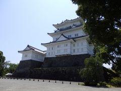 変わらず 立派な小田原城。