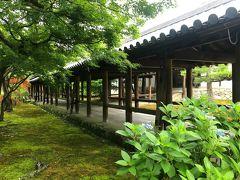 奈良の東大寺と興福寺から「東」と「福」の字を取ったのが 名前の由来だそうです。1236年より19年費やして完成したお寺。