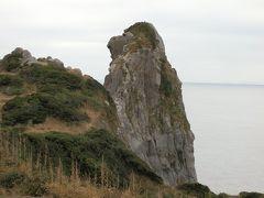猿岩をアップで撮影してみました。横顔を見るとゴリラにも似ているような気がしました。