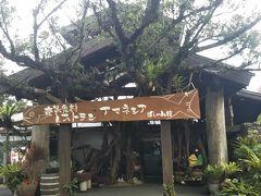 空港から島バスで10分移動  ホテルばしゃ山村に併設されてるレストラン AMAネシアへ ランチをいただきます。