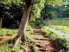 歩く道が東京都(左側)と埼玉県(右側)の境になります。 右側の埼玉県側も以前は木が多かったのに、いつの間にか 個人の家が建っていました。 トトロのイメージの強いこの場所はトラストで所有してほしかったなあ。