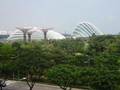 ランチの後は『ガーデンズ・バイ・ザ・ベイ』へ。 まるでSF映画にも出てきそうな未来型の植物園です。
