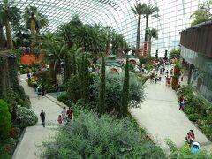 次は『フラワー・ドーム』へ。 色々な地域をテーマにした庭園に植物が植えられています。