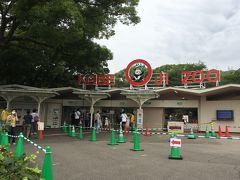 約4か月ぶりの王子動物園です。 王子動物園は一年に一度の訪問ですが、タンタンちゃんが中国へ帰るとの知らせを聞いて、帰国前に一目会いたいと思い行ってきました。 しかし、以前のように誰でも自由に入園出来るわけではありません。 王子動物園は6月1日から営業を再開しましたが、当初は神戸市民に限定、それから兵庫県民、先週から県外の動物サポーターにも入園資格が広がりました。 入園するには抽選予約で、さらにパンダ観覧については時間指定です。 私は、王子動物園の動物サポーターになっていましたが、今年の3月末で期限が切れてしまい更新しないでいたところ(更新は1年ごと)、県外動物サポーターにも枠が広がったことを知り、慌てて更新の申し込みをしました。 そして、入園の抽選予約を申し込んだところ、無事当選し入園する権利を得ることが出来ました。 いつも王子動物園に行くときは、早朝の新幹線に乗り、開園時間の9時少し前に動物園に到着するようにしていましたが、今回は自分のパンダ観覧時間が16時30分から45分だったこともあり、少し遅い時間の10時30分すぎに動物園に到着です。