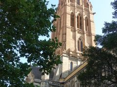 セント・ポール大聖堂メルボルンです。イギリス国教会派の教会でロンドン、マカオにも同名の教会があります。オーストラリア三大ゴシック建築の一つです。 入場料は無料ですが、撮影をする場合は5ドルかかります。 見学はやめておきましたが、中はセントパトリック大聖堂に負けず劣らず素晴らしいです。