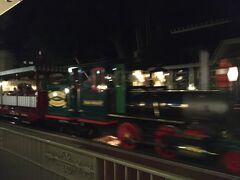歩き疲れたので鉄道でパークの入口まで。これでディズニーパーク訪問は終了したのでした。楽しかったー!