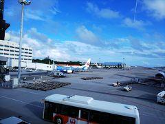 那覇空港。 ジンベエジェット初めて見ました。 写真にはないですが、さくらジンベエもいた!