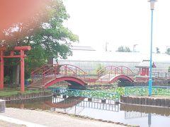 東村山駅からのんびり歩きながら向かいます  …それにしてもあっっっつい!!! 6月なのにもう真夏ですね…(;´д`)  まずは弁天橋公園 そんなに大きくない公園なのにおしゃれな橋がかかっています  近くでボール遊びしてる親子がいたけど…ボール落とさないようにね!(笑)