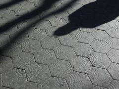 グラシア大通りには、ガウディのデザインしたタイルが貼られています。