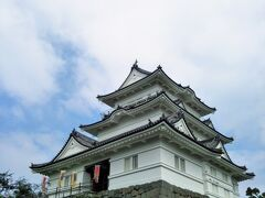 難攻不落といわれた小田原城。 S35年に再建されたという、鉄筋コンクリートのお城でした。