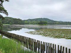 これが 1801年、白河藩主松平定信が築造した日本最古といわれる公園です。 公園内には、日本庭園や神社もあります。