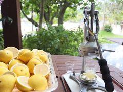 セイルフィッシュカフェのテラスには生グレープフルーツジュース!