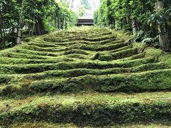 苔の石段。階段の先が本殿です。 石のくぼみにも、歴史を感じます。