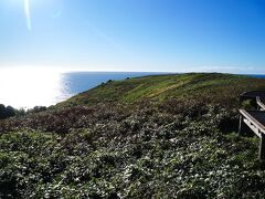 4日目、コフスハーバー沖のマトンバード島へ行きます。ここは夏の渡り鳥の巣営地ですが、冬には鳥は外国に飛び立った後です。