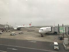 今日の飛行機です。 親子丼食べならが、飛行機を待ちます。