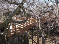 二ノ丸と本丸とつなぐ桜雲橋。桜の時期にゃ撮影スポットとして必ず出てくる場所。ですが桜が無い状態だとこんなもんです。
