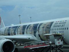 那覇空港に着くと、皆が写真を撮っていたので何かと思ったら、嵐ジェットでした。