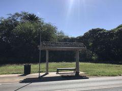 10:23 ハレイワに到着! ザ・バス「Kamehameha Hwy + Opp Haleiwa Beach Park」停留所