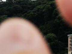 熱海城をつまみます。